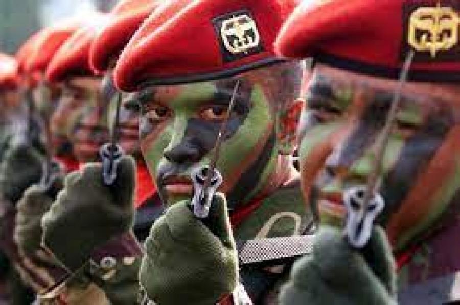 Inilah 9 Pasukan Elite TNI yang Sangat Mematikan, Salah Satunya Setara dengan 120 Prajurit